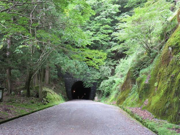 旧天城トンネル01