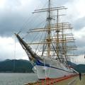 写真: 日本丸 0812(1)