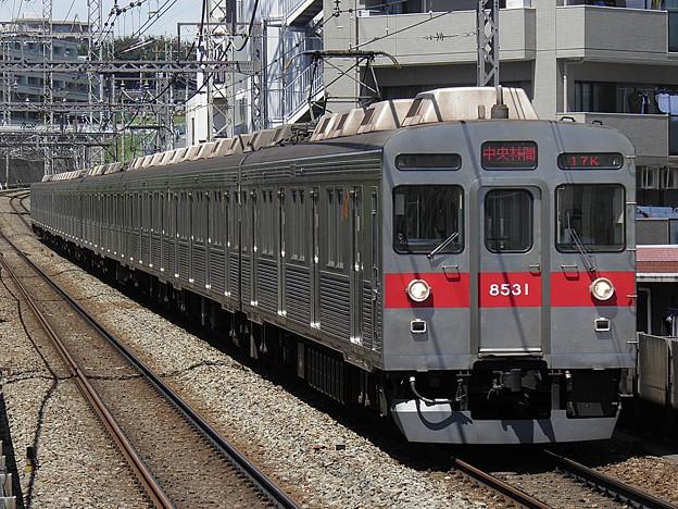 P8060033