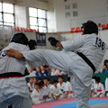 Photos: 2014日本ネパール国際親善拳法 (197)
