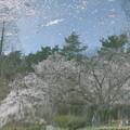 Photos: 春のスケッチ♪