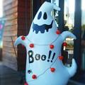 Photos: ハロウィンのおばけだぞぉぉ~Boo !!