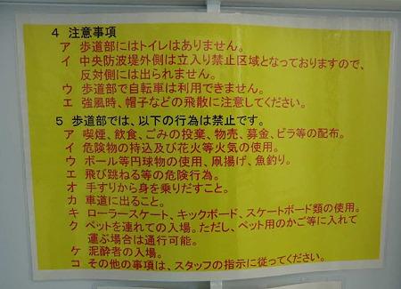 tokyo gate bridge-240414-7
