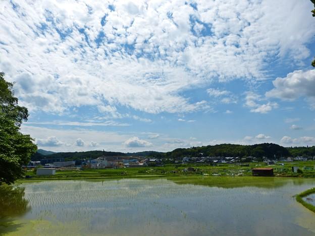 Photos: 梅雨の晴れ間(1)
