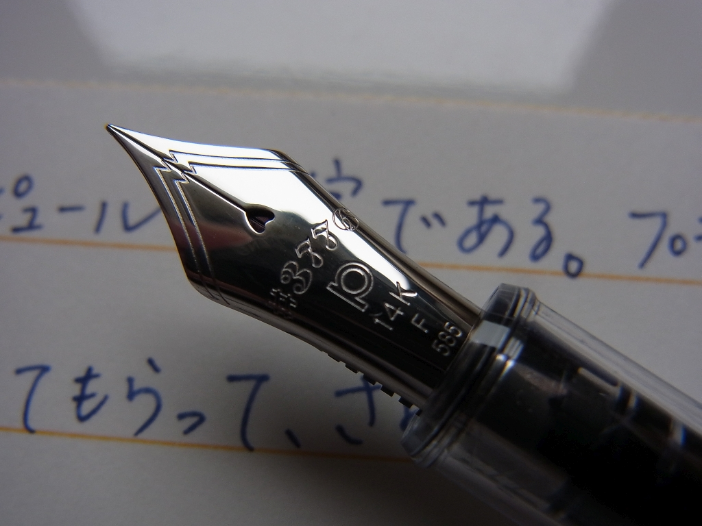 PLATINUM NICE Pur nib zoom-in