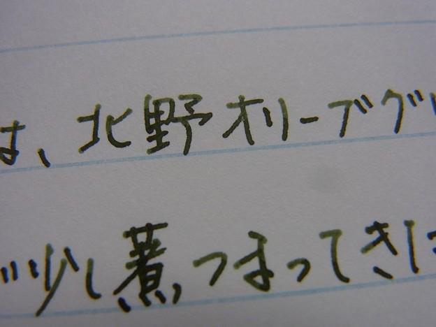 NAGASAWA Kitano Olive Green handwriting #1 (zoom)