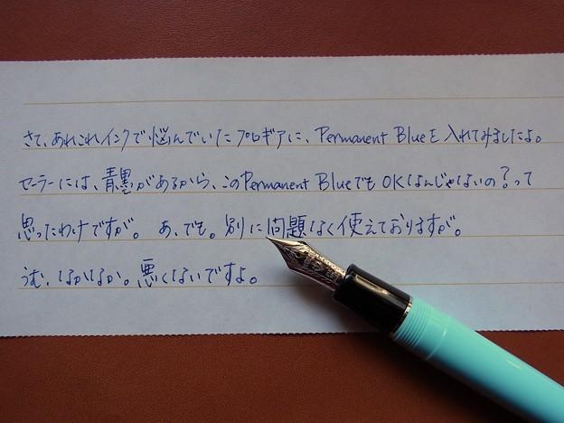 Sailor Professional Gear (Morita Fountain Pen Shop Original) + Montblanc Permanent Blue