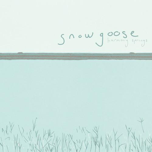 Snow Goose - Harmony Springs