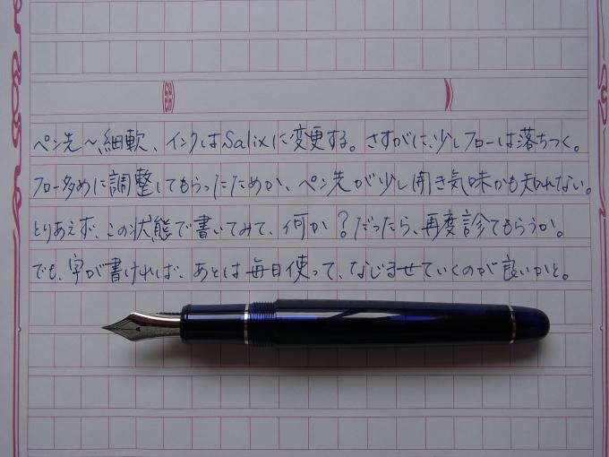 プラチナ #3776 センチュリー シャルトルブルー ロジウム 細軟 + Salix + 桃雲流 #1