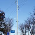 写真: 芳野台線14号鉄塔