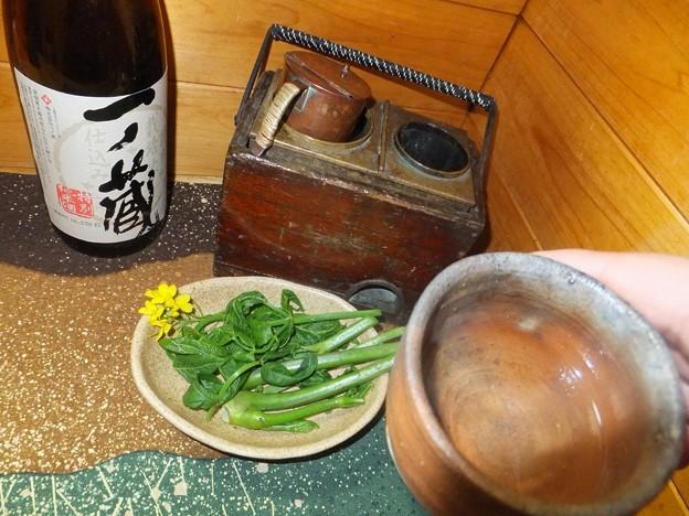 タラの芽レシピ