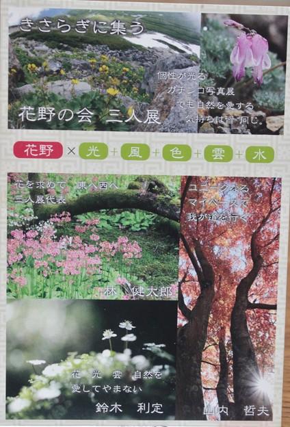 写真: 花写真展開催中 『花野の会三人展』 ネイチャー写真展