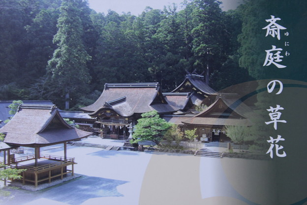 小国神社発行写真集 斎庭の草花(ゆにわのくさばな)