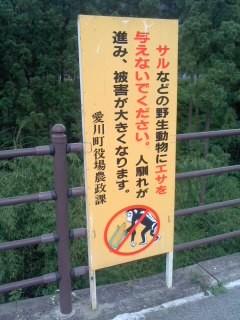 サル餌付け禁止(7月13日、あいかわ公園)