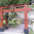 夫婦木神社の鳥居(8月2日)