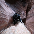 Photos: Buckskin Gulch (22)
