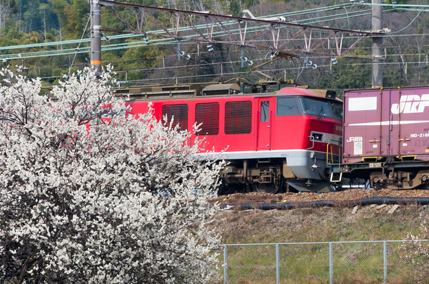 EF510【3092レ】
