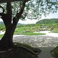 Photos: IMGP0412安来市、足立美術館日本庭園2
