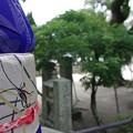 Photos: IMGP0702光市、普慶寺4