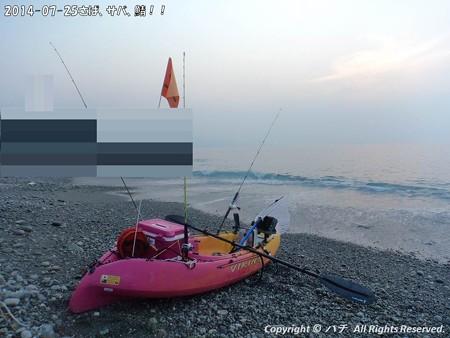 2014-07-25さば、サバ、鯖!! (1)