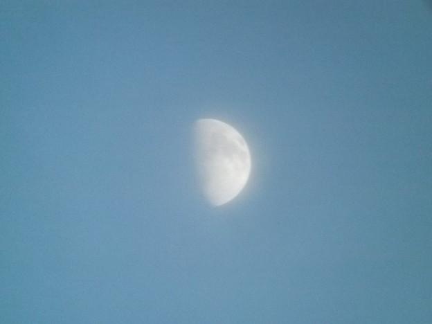 薄雲がかかった月