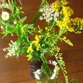 写真: 十五夜の野の花摘み