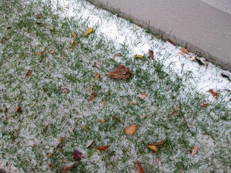 10月25日初雪