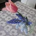 写真: 切り花