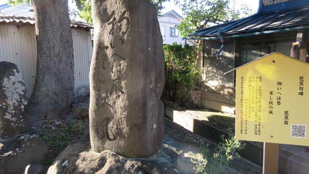 横田城(長野市篠ノ井)芭蕉句碑
