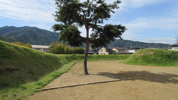 Photos: 松代城(長野市営 海津城跡公園)二の丸