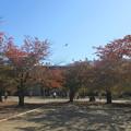 松代城(長野市営 海津城跡公園)本丸