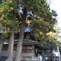 北向観音(上田市)