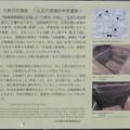 久野森上遺跡・久野沢尻遺跡(小田原市)