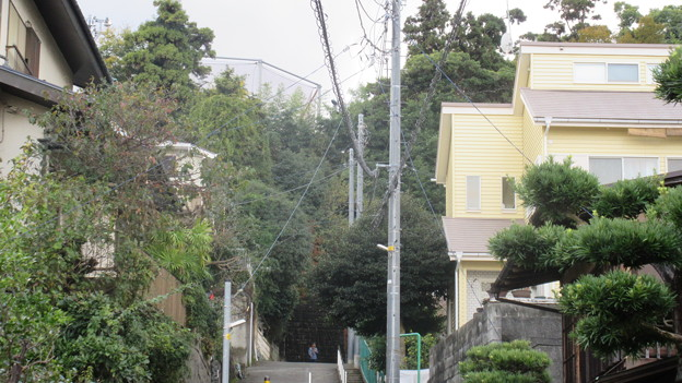小田原古城 堀跡(西曲輪東流路。神奈川県)