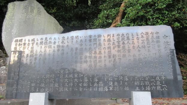 小田原古城 大久保神社(藤原平南堀。神奈川県)