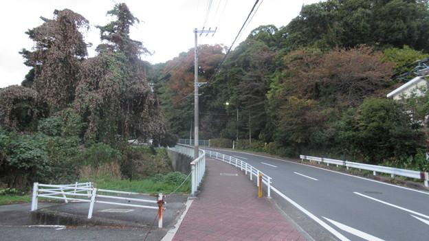 小田原古城 二の丸惣構堀(小峯畑。神奈川県)