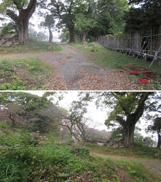 小田原城 御用米曲輪(神奈川県)