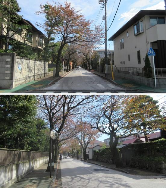 小田原城 西海子小路(神奈川県)