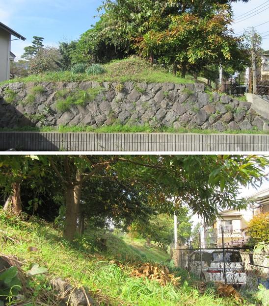 小田原古城 蓮上院土塁(神奈川県)