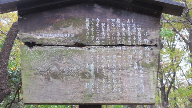 小野路城 本丸 東下(町田市)