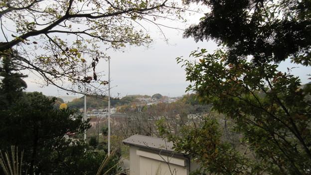 大泉寺/小山田氏館・小山田城 秋葉社より南遠景(町田市)