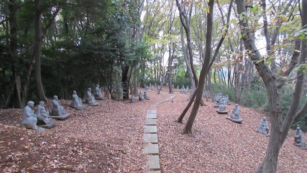 大泉寺/小山田氏館・小山田城 本丸(町田市)