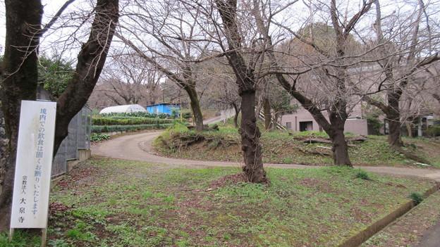 大泉寺/小山田氏館・小山田城(町田市)