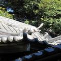 Photos: 三囲稲荷神社(向島2丁目)