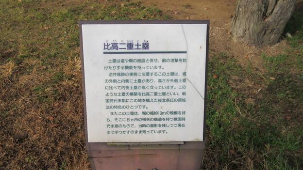逆井城 比高二重土塁(茨城県坂東市営 逆井城跡公園)