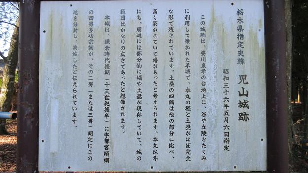児山城(下野市)