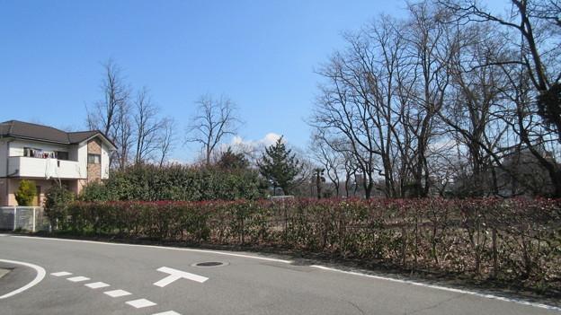 石倉城(前橋市)本丸跡