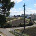 上野国分寺跡(前橋市)染谷川古戦場考察地