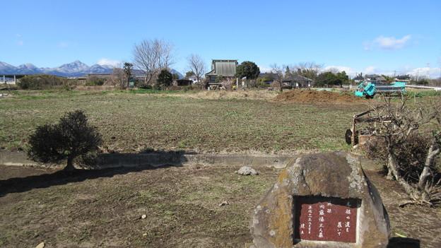 善龍寺 内藤塚(高崎市)