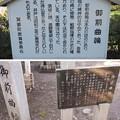 Photos: 箕輪城(高崎市)御前曲輪